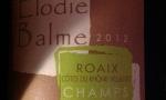 Champs Libres 2012 - Elodie Balme