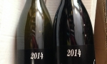 36 St Jo Blanc et Rouge 2014 (Dar & Ribo)